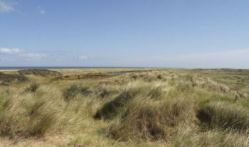 The dunes and Marram grass, Holme-next-the-Sea - Photo  		Tony Foster
