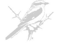 Norfolk Ornithologists' Association logo