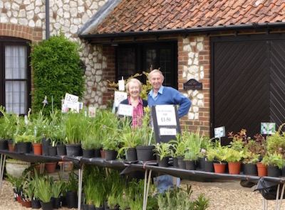 Plant Stall - Open Gardens 2015 - Photo Tony Foster